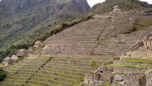 FAO: Perú posee uno de los sistemas importantes del Patrimonio Agrícola Mundial