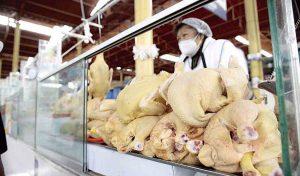 Inflación de julio subió impulsada por alza del gas, pollo y aceite